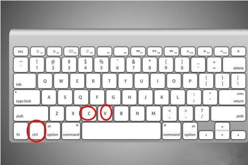 复制粘贴的快捷键介绍