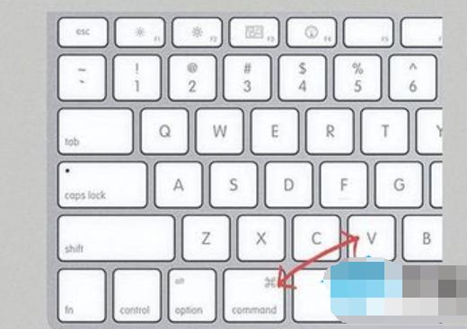 苹果电脑复制粘贴快捷键,教您苹果复制粘贴快捷键是什么